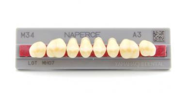 Зубы Yamahachi, жеват.группа, A2 M34, верх, 8шт.