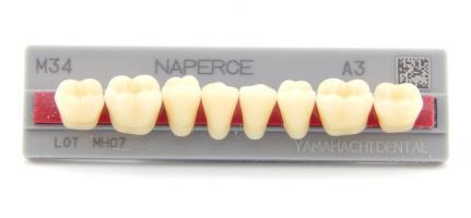 Зубы Yamahachi, жеват.группа, A2 M34, низ, 8шт.