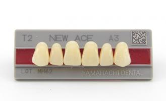 Зубы Yamahachi, фронт.группа, A2, T6 верх, 6шт.