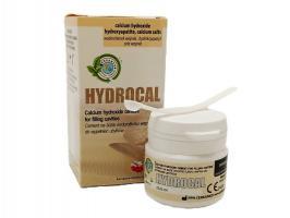 Гидрокал Hidrocal, гидроокись кальция для временного пломбир., Cerkamed, 10г