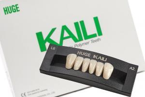 Зубы KAILI фронт низ A2 L6