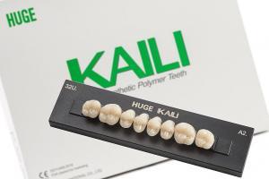 Зубы KAILI жевательные A2 30 верх