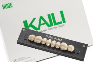 Зубы KAILI жевательные A2 34 верх