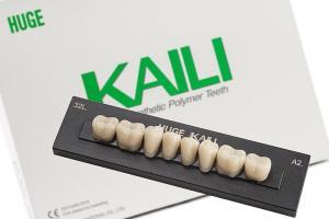Зубы KAILI жевательные A3,5 30 низ